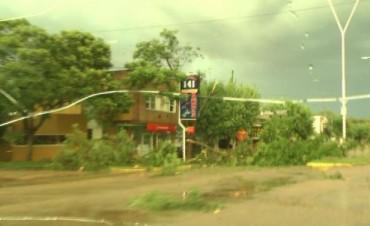 Fuerte tormenta en Chajarí provoco daños en la ciudad