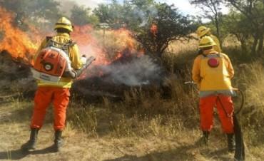 La Pampa: incendios dejaron casi un millón de hectáreas quemadas y pérdidas por $ 1.000 millones