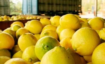 El gobierno de Trump suspendió la importación de limones argentinos