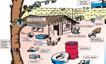 Enfermedades transmitidas por mosquitos