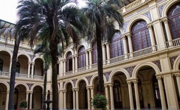 Adquirieron una palmera que vale $235 mil para un patio de la Casa Rosada