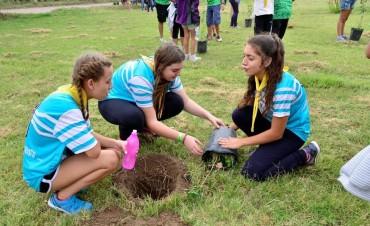 Adolescentes de toda la provincia plantarán palmeras en el skate park de Villaguay
