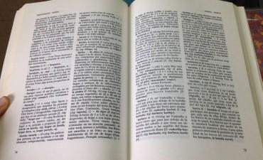 Diccionario de argentinismos: Academia Argentina de Letras incluye 1400 vocablos
