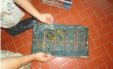 En un operativo detienen a cazadores de aves y a otro por matar un vacuno