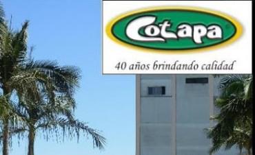 Crisis en el sector lácteo golpea en Paraná: Cotapa suspende su producción