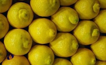 EEUU extendió la suspensión a la importación de los limones argentinos