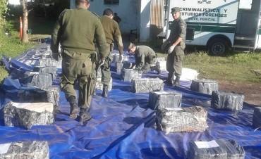 Secuestraron casi una tonelada de marihuana en Hasenkamp