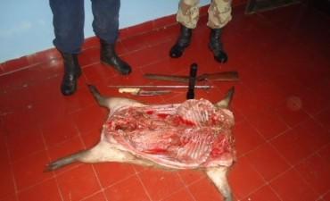 Secuestro y decomiso por operativos del Personal de Abigeato.