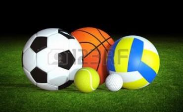 Piden a la Dirección de Deportes Municipal relevamiento  sobre carencias y falencias de Instituciones ..