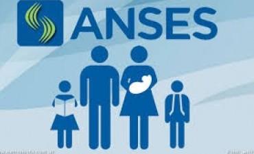 Cómo acreditar el vínculo de convivencia para el cobro de prestaciones de Anses