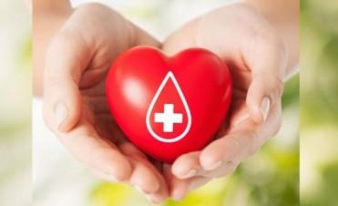 Todo lo que hay que saber sobre la donación de sangre