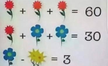 La solución a la ecuación matemática de las flores que enloquece a internet