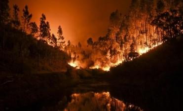 Voraz incendio en Portugal: al menos 62 muertos y más de 59 heridos