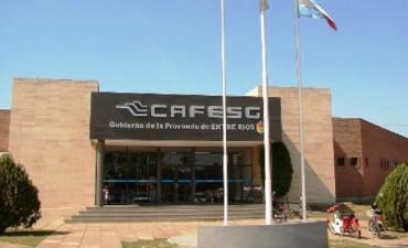 El presupuesto anual de CAFESG debería ser de 500 millones y