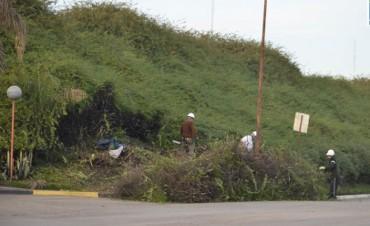 Trabajos de poda y limpieza de los terraplenes de la Ruta Nacional N 127