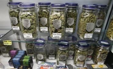 Uruguay: el miércoles comienza la venta de marihuana en farmacias