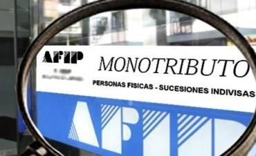 Monotributo: cómo es el control que hace la Afip sobre cada contribuyente