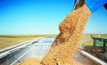 Entre Ríos alcanzó una producción agrícola récord