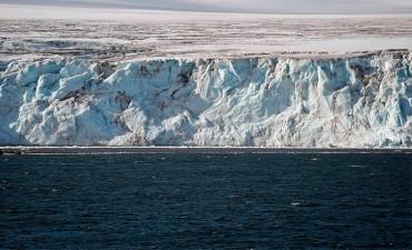 El calentamiento de un grado podría alterar el ecosistema antártico