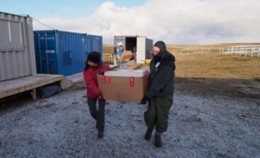 La Cruz Roja dijo que en Malvinas encontró 121 restos de argentinos muertos en la guerra
