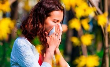 Alergias en Primavera: Factores, síntomas y medidas de prevención