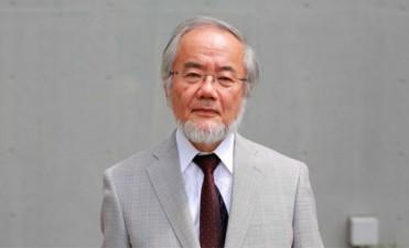 Un japonés obtuvo el Nobel de Medicina por investigaciones sobre células