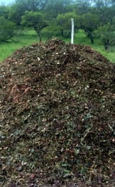 Disponibilidad de material molido de residuos verdes
