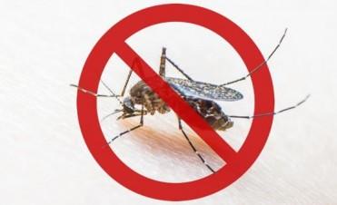 Dengue: una epidemia silenciosa y en aumento
