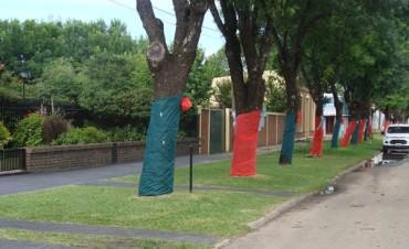 Buena idea de los vecinos de Calle Irigoyen