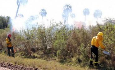 Prohíben realizar quemas en el territorio entrerriano hasta el 28 de febrero