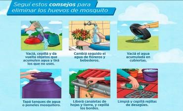 Habilitan línea gratuita de información sobre dengue, zika y chikungunya