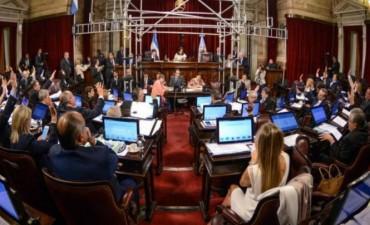 El Senado de la Nación convirtió en ley la Emergencia Social