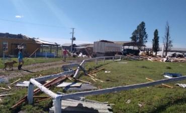 Feliciano : Un criadero de cerdos fue destrozado por fuerte temporal de viento y lluvia