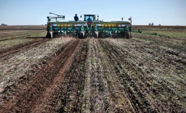 Quiénes se quedaron con otras 4000 hectáreas de las Fuerzas Armadas para sembrar