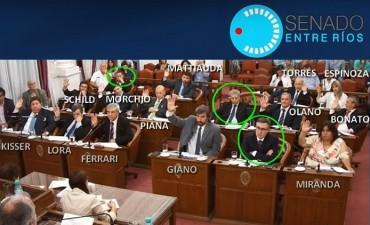Duras críticas a senadores que votaron la autorización del glifosato