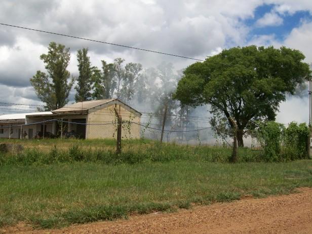 Incendio de pastizales en los depósitos de Vialidad Nacional