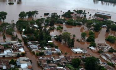 El río Uruguay comenzó a bajar y se evalúa el impacto en la producción agropecuaria