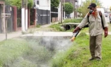 Hay 149 casos de Dengue en el país y aumenta el alerta