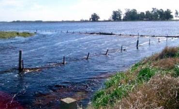 Por inundaciones y sequía, habrá importantes pérdidas en las cosechas