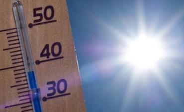 Ola de calor: Se esperan 35 grados para el lunes pero anticipan un alivio