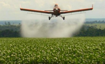 La Justicia provincial volvió a frenar las fumigaciones con agroquímicos