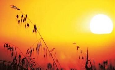 Vuelve el calor: Pronostican máximas de 35 grados para los próximos días