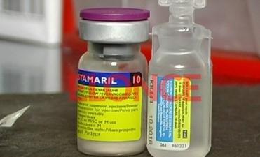 Todo sobre la fiebre amarilla: Quiénes deben vacunarse y quiénes no