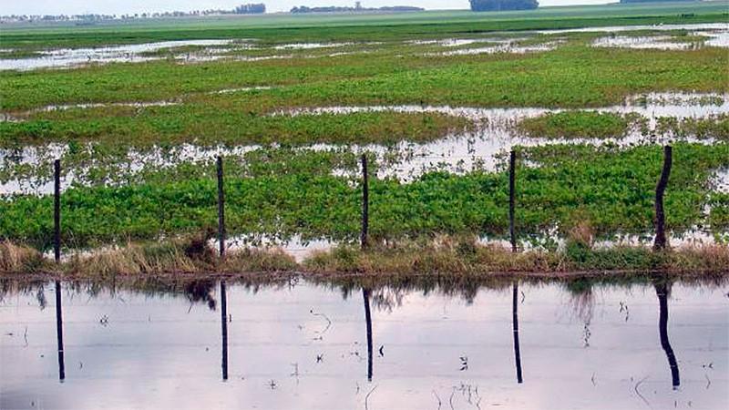 Estiman pérdidas de al menos 2.200 millones de dólares por las inundaciones