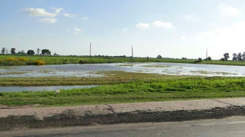 La cosecha de granos aportaría US$ 28.000 millones pese al exceso de lluvias