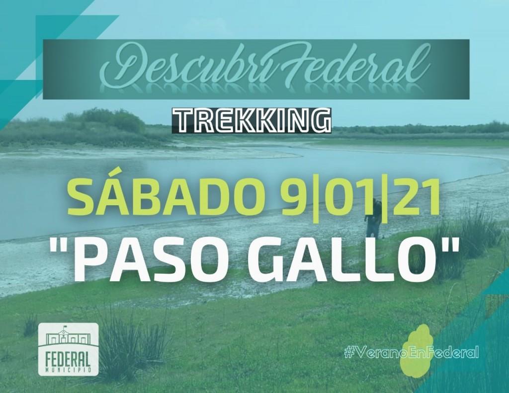 Verano en Federal : Trekking Paso Gallo
