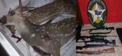 Brigada de Nogoyá secuestra armas y decomisa animales silvestres
