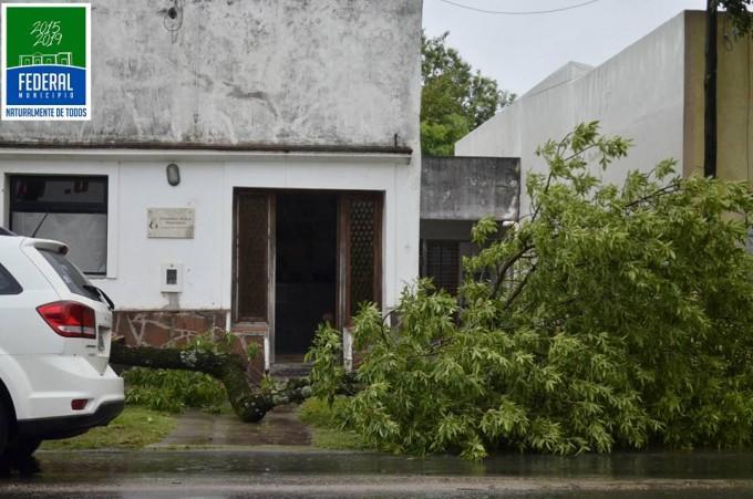 El temporal paso por Federal y dejo sus consecuencias