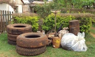 Implementan medidas preventivas contra el Dengue