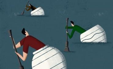Yerba mate: de la guerra de precios a la batalla por la calidad